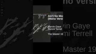 Ain't No Mountain High Enough (Mono Version)