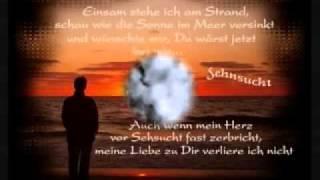 Matthias Reim-Du Bist Mein Glück