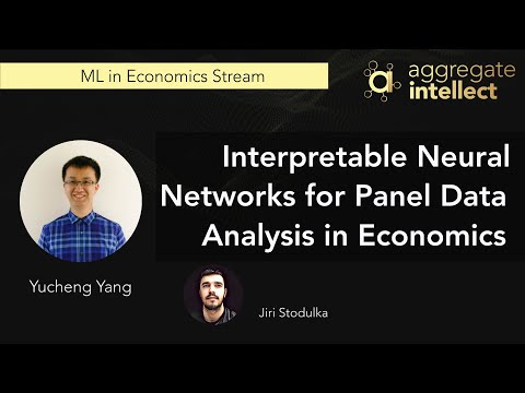 Interpretable Neural Networks for Panel Data Analysis in Economics