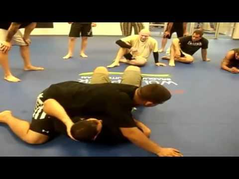 Frank MIR - (Brazilian Jiu Jitsu) Highlights.ᴴᴰ