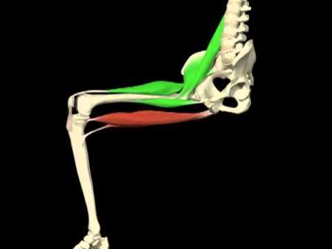 Cómo reducir el dolor de la lesión en la espalda