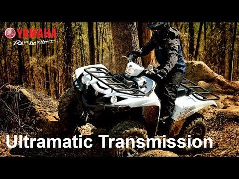 2018 Yamaha Grizzly EPS SE in Hicksville, New York
