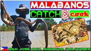 Harabas EP34 - Malabanos (Eel) Catch and Cook