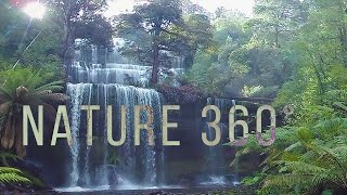 Virtual Nature 360° - 5K Nature Meditation for Daydream, Oculus, Gear VR
