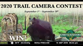 2020 Trail Camera Contest - Kinsey's Outdoors