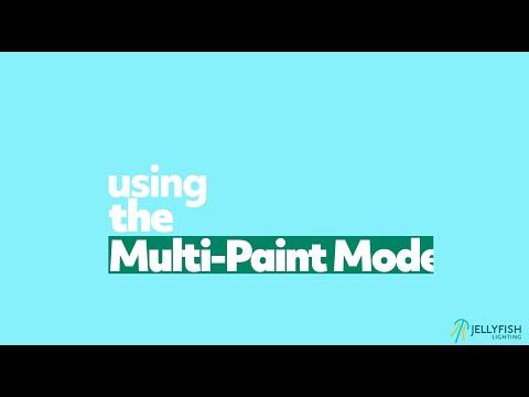 Multi-Paint Mode