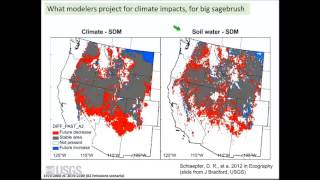 Sagebrush Ecosystems in a Changing Climate and Adaptive Management