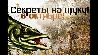 Как ловят щуку в октябре на реках