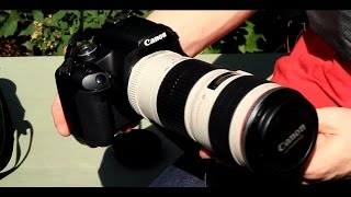 Canon EF 70-200mm f/4 L USM Lens Review and Sample Shots