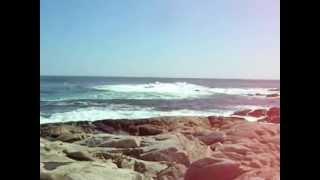 Tindersticks - Seaweed