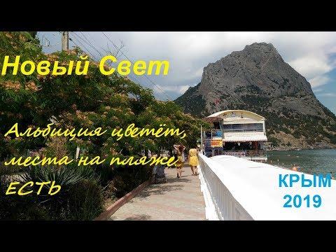 Крым, Новый Свет 2019, Пляж, Набережная 24 июня. Цветет альбиция, места под солнцем есть