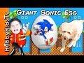 World's Biggest SONIC Surprise Egg! HobbyDog Races + Surprise Toys and Race Cars Fun HobbyKidsTV