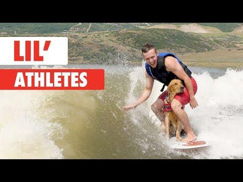 בעלי חיים עם כישורים אתלטיים מרשימים וחמודים שיעשו לכם את היום!