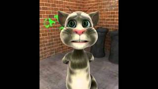 Lille kattepus