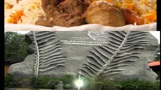 Gambar cover Zapin Ya Salam - Lagu Tradisional Masyarakat Johor (MMP3023)