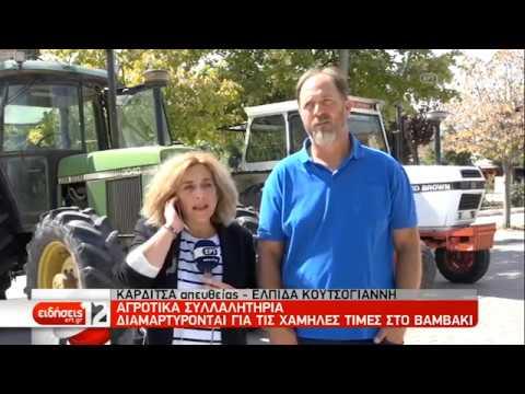 Αγροτικά συλλαλητήρια για τις χαμηλές τιμές στο βαμβάκι   23/09/2019   ΕΡΤ