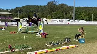 Tulara Willow. Owned by Darren Kennedy and ridden by Becky Jenkins.