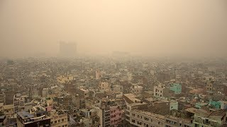 video: How I survived the pollution of Delhi and Beijing with my young family