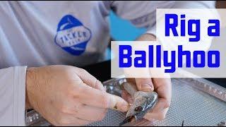 rigging ballyhoo for trolling - मुफ्त ऑनलाइन