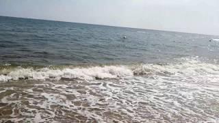 Проезд и отдых в Затоке от компании Турагентство «BUS BY» - видео