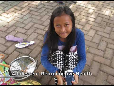 The Government of Indonesia – UNFPA Humanitarian Intervention