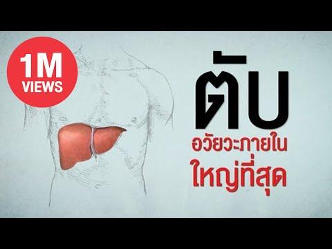 การรักษา Giardia ของกระเทียมกับนม
