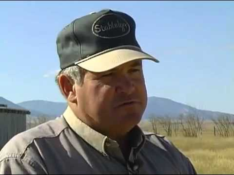 Public Lands Grazing Management