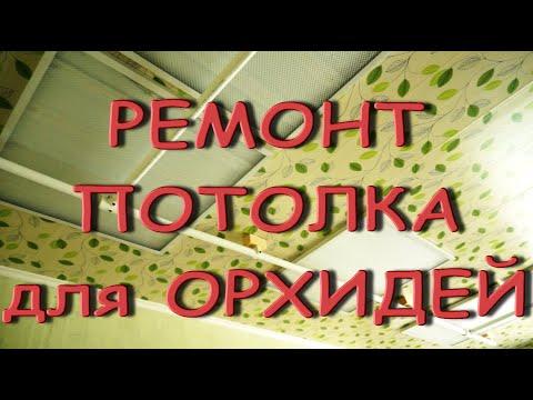 Ремонт ПОТОЛКА для ОРХИДЕЙ,скоро ОНИ будут и ТАМ!