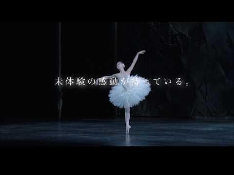 K-BALLET COMPANY Winter 2020『白鳥の湖』