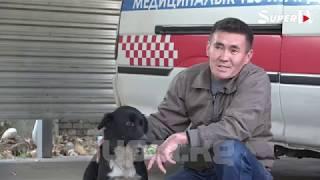 Кыргыз