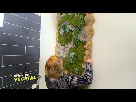 Le traitement du microorganisme végétal des ongles par le savon de Marseille avec la soude