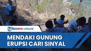Kisah Pelajar Mendaki Gunung Ile Lewotolok untuk Cari Sinyal Internet, Siswa: Tolong Kami Pak Jokowi