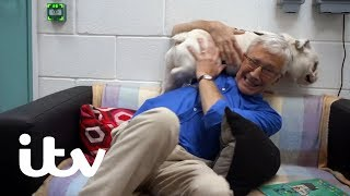 Paul O'Grady: For The Love Of Dogs | Story Time for Hyper English Bulldog Puppy Spike | ITV