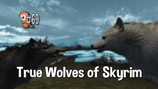 Skyrim Mods #69 - True Wolves of Skyrim
