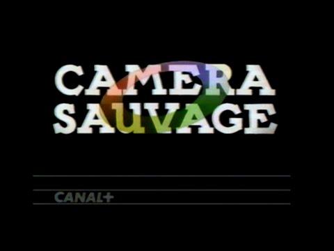 CANAL PLUS Jingle CAMERA SAUVAGE V2