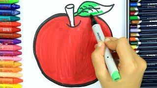 Elma Boyama Sayfaları 🍎 | Elma Nasıl Çizilir? | Boyama Öğrenme