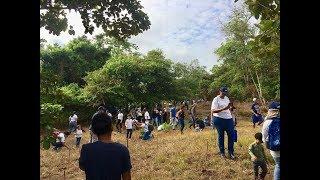 Neues Video Globale Visionen: Wiederaufforstung , Chorrera/Panama