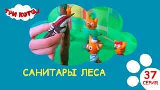 Три кота - Санитары леса| Выпуск №37|Развивающее видео для детей