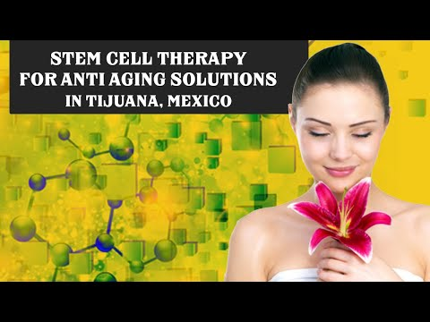 Affordable-Package-for-Stem-Cell-Therapy-for-Anti-Aging-Solutions-in-Tijuana-Mexico