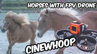 CINEWHOOP FPV DRONE FLY ON THE FARM, WITH HORSES. (4K VIDEO)