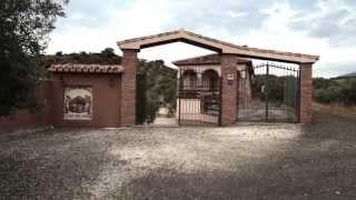 Casa Los Olivos 9