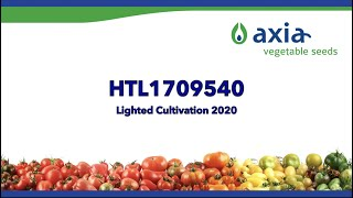 HTL1709540 2020