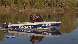 Когда запрет на рыбалку в уфе