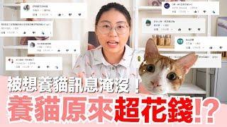 養貓要花多少錢?好味家養貓花費精算!【好味貓知識】EP11