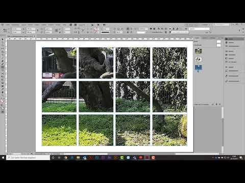 Mehrfachrahmen mit einem Bild befüllen in InDesign