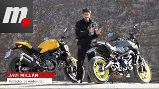 Ducati Monster 821 vs Yamaha MT-09 | Comparativo / Prueba / Test / Review en español | motos.net | Kholo.pk