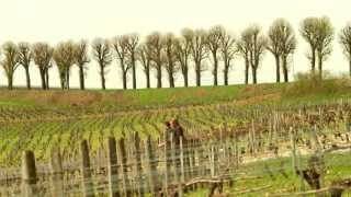 "#KulTour 2013 - Episode 13 ""Domain Fouassier Sancerre"""