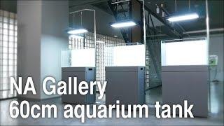 Nowe trzy 60tki w galerii ADA