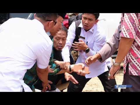 Wiranto Diserang di Pandeglang, Salah Satu Pelaku Perempuan