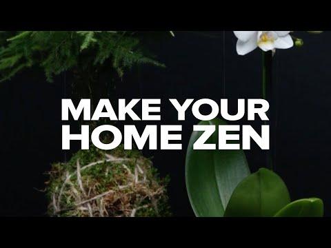 mp4 Decoration Zen, download Decoration Zen video klip Decoration Zen